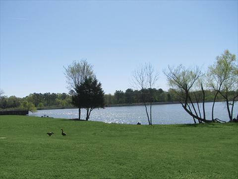 Ft oglethorpe apartments for rent chattanooga tn for 5840 lake resort terrace chattanooga tn